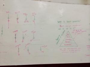 Gymnastic Cert 1